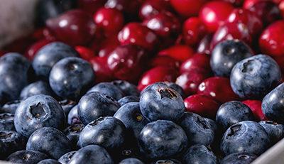 Nutriția și fertilizarea afinului